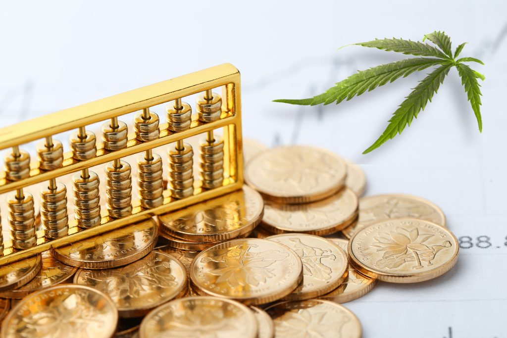 Intelligently Investing in the Cannabis Industry - Leafy